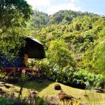 Secretos del Bambú – Habitación: Alaya