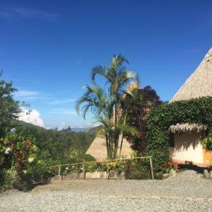 Cala Encuentros - COSTA RICA - Secretos del Bambú